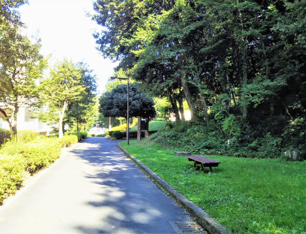 大塚東公園|公園内の遊歩道とベンチ