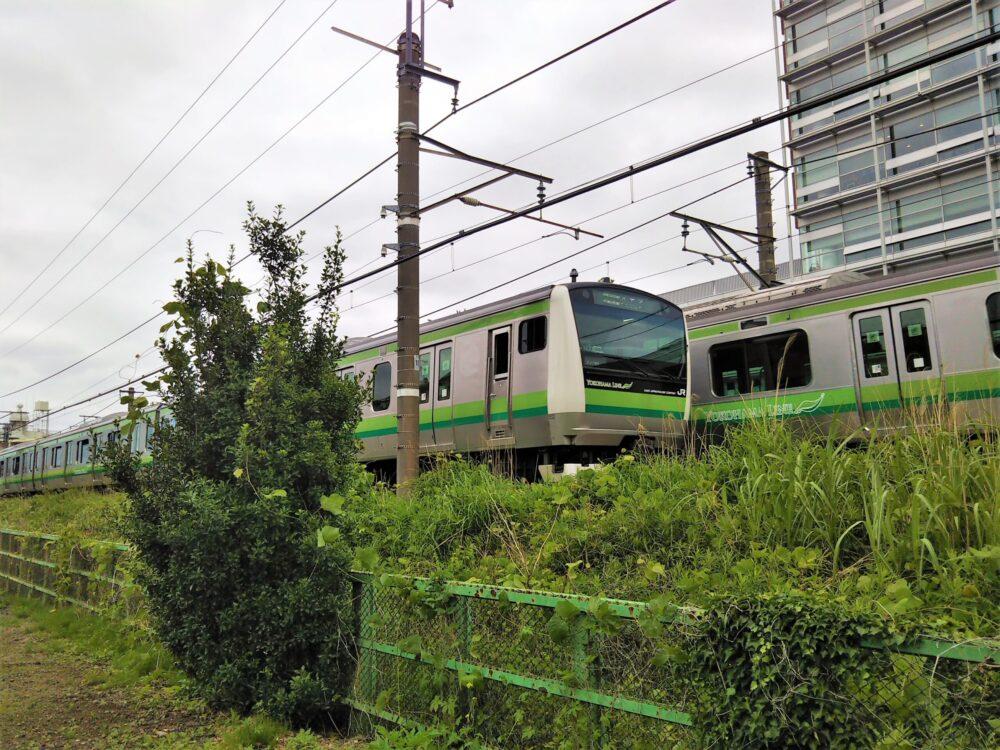 境川ゆっくりロードから見える横浜線の電車
