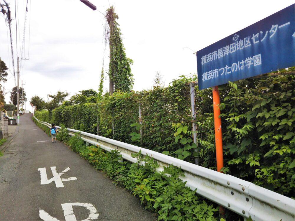 長津田橋周辺