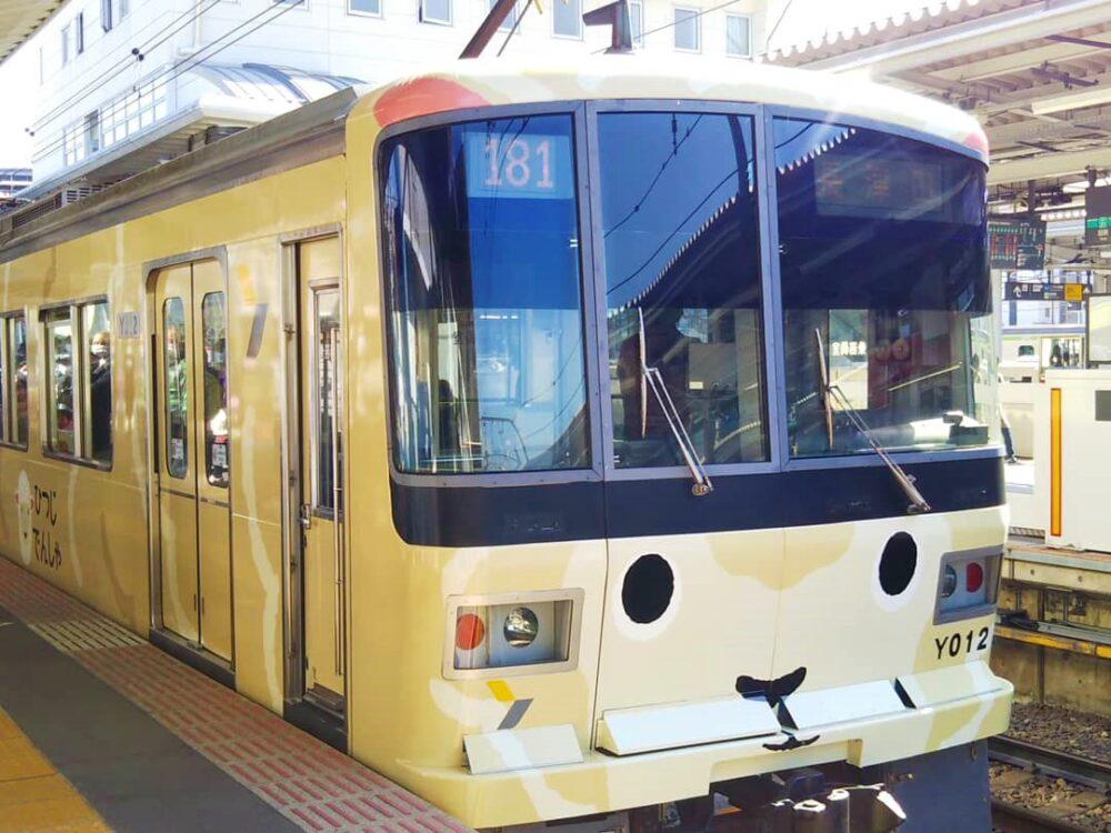 長津田駅で見えるひつじ電車