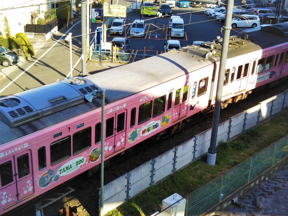 京王の動物園線ラッピング電車