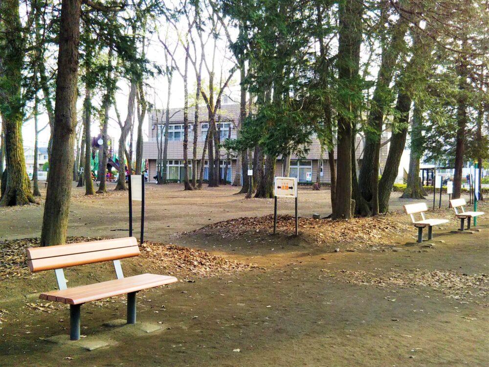 林間公園内のベンチ