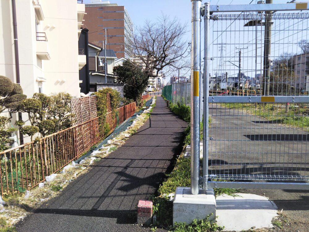 町田市役所に繋がる道