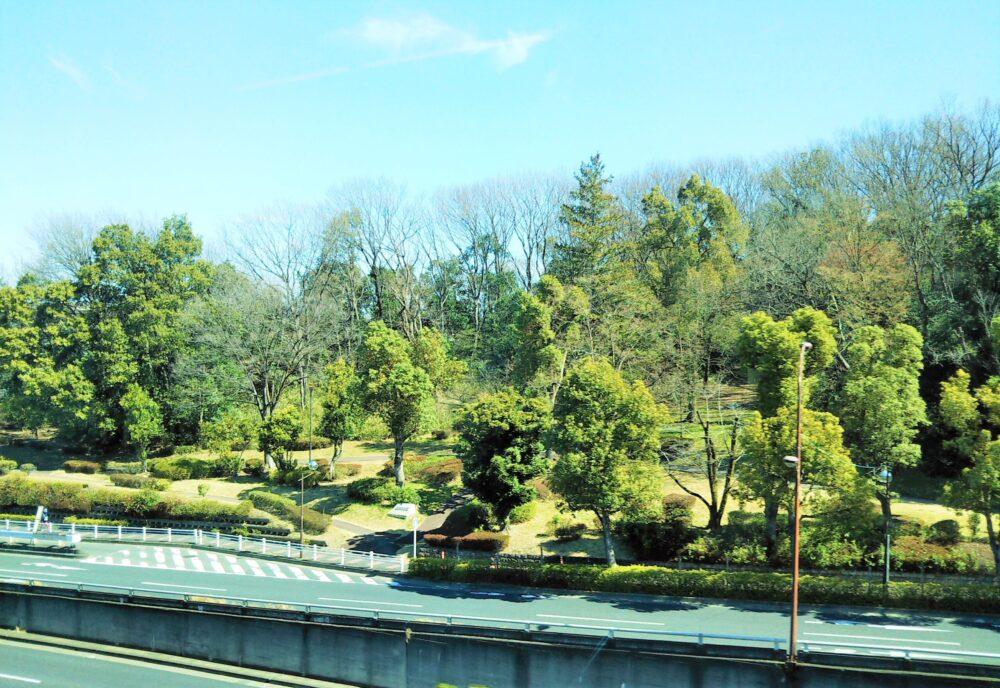 多摩モノレールから見える大塚東公園