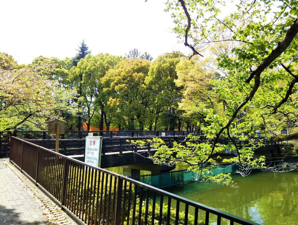 鹿沼公園にある池と遊歩道