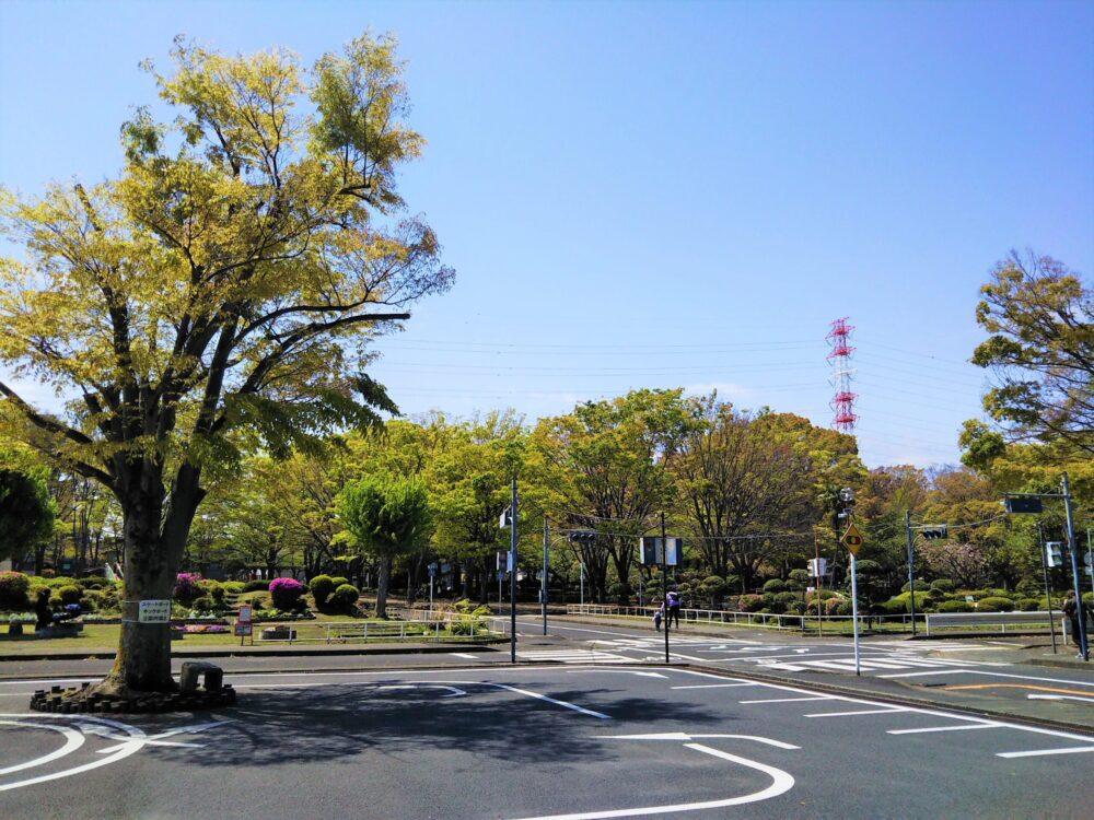 鹿沼児童交通公園の幼児専用広場