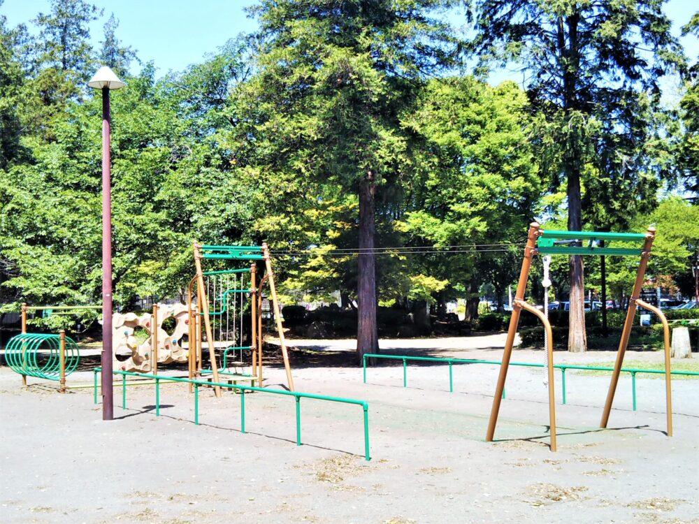 淵野辺公園のターザンロープ
