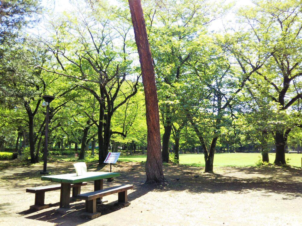 淵野辺公園のベンチ