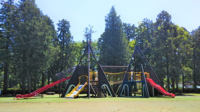 淵野辺公園の大型木製複合遊具