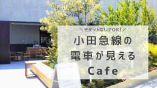 ロマンスカーミュージアムのカフェ「クラブハウス」(神奈川県の海老名駅にある電車が見えるカフェ)