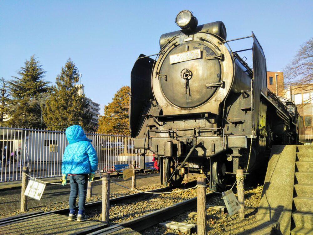 鹿沼公園で見えるSL(蒸気機関車)とSLを眺める子供