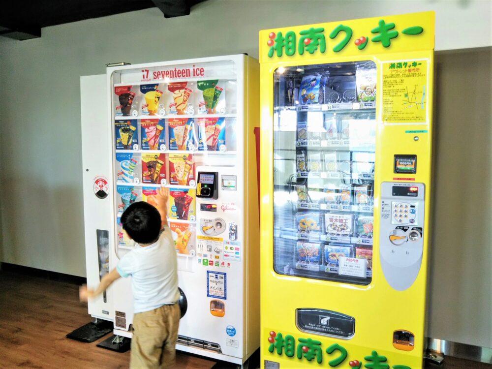 湘南モノレール 湘南江の島駅4階にある自販機
