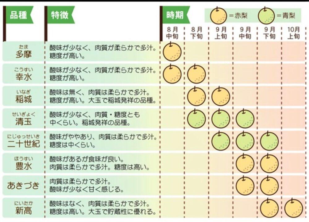 稲城の梨 収穫時期一覧